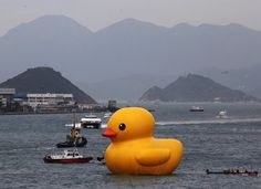 Rubber Duck by Dutch conceptual artist Florentijn Hofman floats in front of a hilly skyline at Hong Kong's Victoria Harbour May 2, 2013.