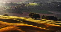 Last light on Tuscan Hills by © Jarmila © © ©  on 500px