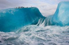 Adelie Penguins on an iceberg fleeing from powerful storm