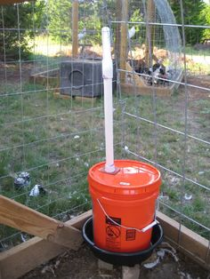 DIY Chicken Watering Hole (and Other Critters Too) | Year Zero Survival – Premium Survival Gear, Disaster Preparedness, Emergency Kits