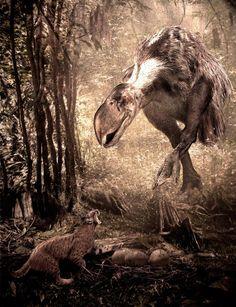 1,8 млн лет назад, Северная Америка. Самка форорацида титаниса (250 см в высоту, около 150 кг) и примитивная рысь Felis rexroadensis.