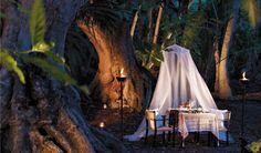 Dinner with an angel is always an intimate, extraordinary affair.  #GenaShowalter #books #romance