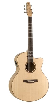 Seagull Guitars - Natural Element Series  This is the guitar I've been saving for - $550