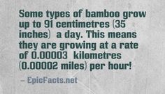 Some Useful Information...more at EpicFacts.net