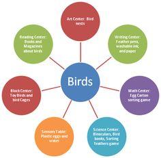 Bird Theme Web Preschool Lesson Plan