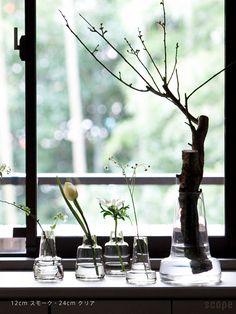 Holmegaard (ホルムガード) / Flora ベース