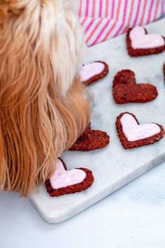 Dog eating heart-shaped beet cookie off marble platter Love Beets, Fresh Beets, Natural Food Coloring, Pink Food Coloring, Dog Cookies, No Bake Cookies, Sour Cream Icing, Vegetable Prints, Types Of Flour