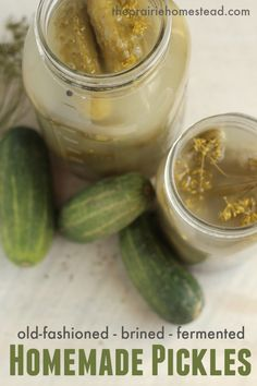 homemade fermented pickle recipe with dill and garlic