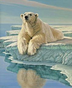 Arctic Heir - Polar Bear painting by Paul Krapf Polar Bear Drawing, Bear Paintings, Bear Art, Animal Totems, Watercolor Animals, Wildlife Art, Animal Drawings, Horse Drawings, Pet Birds