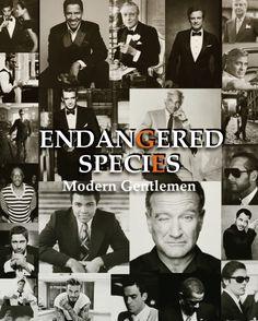 Endangered Species      Gentleman's Essentials