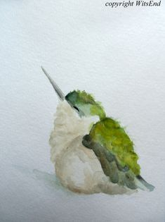 Hummingbird. Baby Bird watercolor painting original nursery art by 4WitsEnd, via…