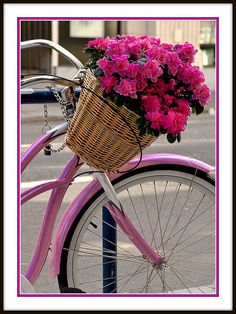 bikes, baskets and floral joys