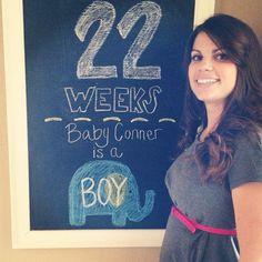 Baby Conner: Week 22