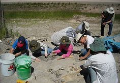 Another family paleontology dig, run through the South Dakota School of Mines and Technology