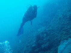 Week 2-3 of Natacha's Divemaster course in Amed - http://www.twofishdivers.com/2016/11/week-two-and-three-natachas-divemaster-course-in-amed/?utm_source=PN&utm_medium=Pin+to+Travel&utm_campaign=SNAP%2Bfrom%2BTwo+Fish+Divers