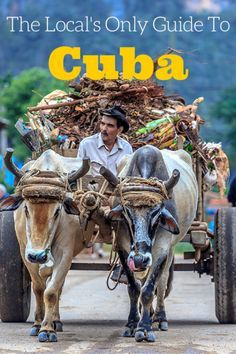 The best local spots and things to do in Cuba for an authentic experience - advice from a local travel Hero!