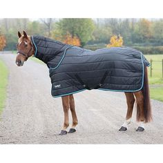 Shires Tempest Original 200 Stable Rug and Neck Set Navy Blue