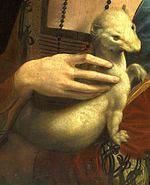 "Detail from Leonardo da Vinci's ""Lady with an ermine"" (actually a ferret)"