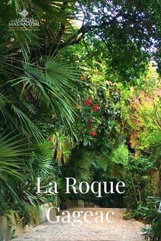 La Roque-Gageac#roquegageac La Roque Gageac, Landscaping Equipment, Brown Roofs, Tips For Oily Skin, La Dordogne, Nature Sauvage, Roof Tiles, Fig Tree, Irrigation