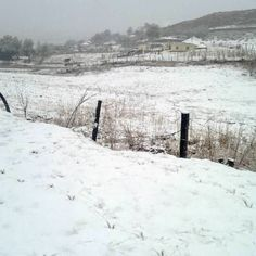 Image result for snow in kzn today pictures Today Pictures, South Africa, Snow, Outdoor, Image, Outdoors, Outdoor Games, The Great Outdoors, Eyes