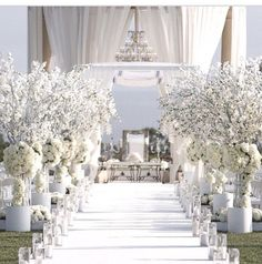 Wow, what a gorgeous white on white ceremony aisle!