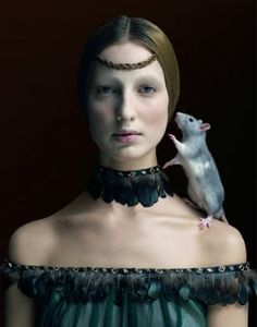 Mouse Wisdom includes: -examine life's lessons -shyness -quietness -understanding details -seeing double meanings in things -invisibility -stealth -guidance in signing contracts -ability to be unseen.