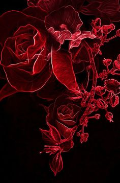Red rose paint