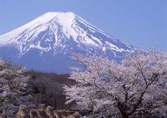 Monte+fuji+%281%29.jpg (1599×1135)