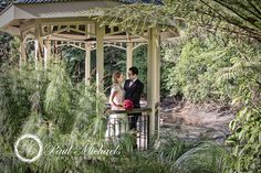 Wedding couple at botanical gardens. New Zealand #wedding #photography. PaulMichaels of Wellington http://www.paulmichaels.co.nz/