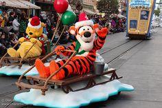 A Christmas Fantasy Parade   Flickr - Photo Sharing!