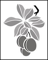 Fruit and Flower Plums stencils, stensils and stencles