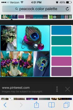 YES-- these ones. My fav pairing....Peacock color palette