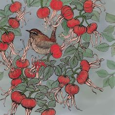 - Wren and Beech Rose Hand Illustration, Wren, Biodegradable Products, Rooster, Wildlife, Greeting Cards, The Originals, Prints, Painting