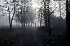 Winter Morning In Runcorn
