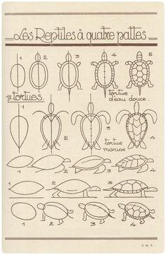 """Books """"Les animaux tels qu'ils sont"""" by R. et L. Lambry Книга """"Рисуем животных"""""""