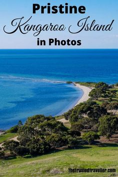 Pristine Kangaroo Island in Photos - The Trusted Traveller