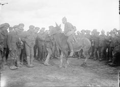 Troops of the 1/5th Battalion, Northumberland Fusiliers cheering one of their comrades who is trying to tame a mule. Toutencourt, September ...