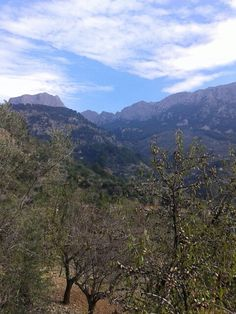 Tramuntana Mountains. Mallorca. Spain.