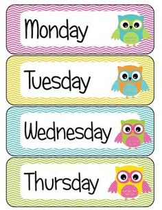 Days of the Week Owl Theme by Justine Greenlee Owl Classroom Decor, Classroom Calendar, Classroom Signs, Classroom Labels, Preschool Classroom, Classroom Themes, Classroom Teacher, Teaching Kids, Kids Learning