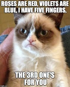 What is grumpy cat's favorite finger? | ROSES ARE RED, VIOLETS ARE BLUE, I HAVE FIVE FINGERS, THE 3RD ONE'S FOR YOU | image tagged in memes,grumpy cat,fingers,middle finger,insult | made w/ Imgflip meme maker
