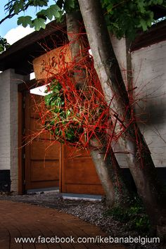 Sogetsu ikebana at the entrance of the Japanese Garden by Ilse Beunen, during Bloom in Ostend. Photography: Ben Huybrechts
