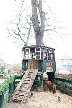 I love this chicken coop/stable. I would trade out the miniature horse and pig for some goats and sheep though. :)