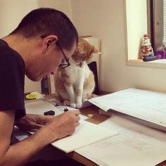 ささみのやつ ジャマばっかり してるにゃ #ねこ #猫 #🐈 #cat #ねこ社長こいも #ねこ部 #大阪 #osaka  #love #cute #cats #neko #ふわもこ部 #kawaii #world_cat  #Instacat #お邪魔虫 #癒しがジャマしてくる