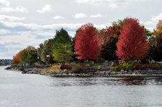 Hardy Park Brockville ON. Fall colours along the St. Lawrence River and the 1,000 Islands