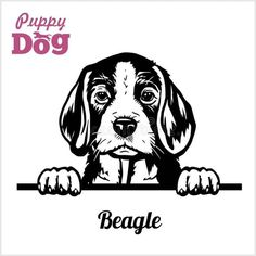 Puppy Beagle - Peeking Dogs - breed face head isolated on white - Buy this stock vector and explore similar vectors at Adobe Stock Pet Quotes Dog, Animal Quotes, Dog Outline, Ceramic Tile Art, Dog Vector, Wood Burning Art, Beagle Puppy, Silhouette Design, Pyrography
