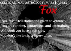 Celtic Animal Astrology - Fox - March 18 to April 14 Celtic Astrology, Astrology And Horoscopes, Astrology Numerology, Astrology Zodiac, Zodiac Signs, Astrology Signs, Animal Spirit Guides, Spirit Animal, Celtic Druids