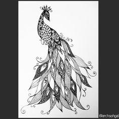 Zen Peacock 8 x 10 afdrukken
