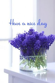 Good Morning Wishes Gif, Good Morning Flowers, Morning Greetings Quotes, Day Wishes, Good Morning Beautiful Pictures, Good Morning Picture, Morning Pictures, Morning Images, Good Morning Inspirational Quotes