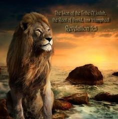 The Lion of the Tribe of Judah, the Root of David has Triumphed! Tribe of Judah Tribe Of Judah, Life Quotes Love, Sassy Quotes, Truth Quotes, Quotable Quotes, Happiness Quotes, Honesty Quotes, Bag Quotes, Strength Quotes