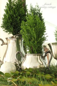 Exceptionally Eclectic - French Country Cottage Christmas - Mini trees in vintage silver . Natural Christmas, Silver Christmas, Noel Christmas, Green Christmas, Christmas Images, Christmas Crafts, Victorian Christmas, Elegant Christmas, Christmas Ornaments